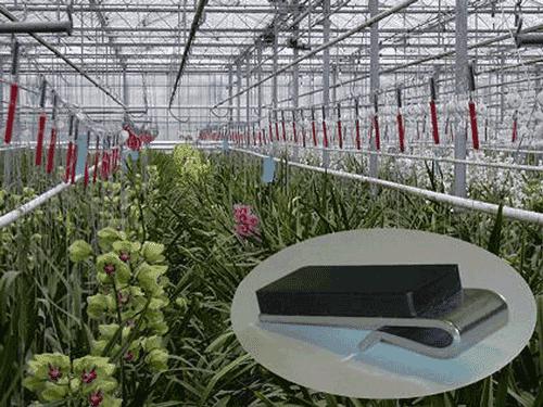 HorticulRack 5